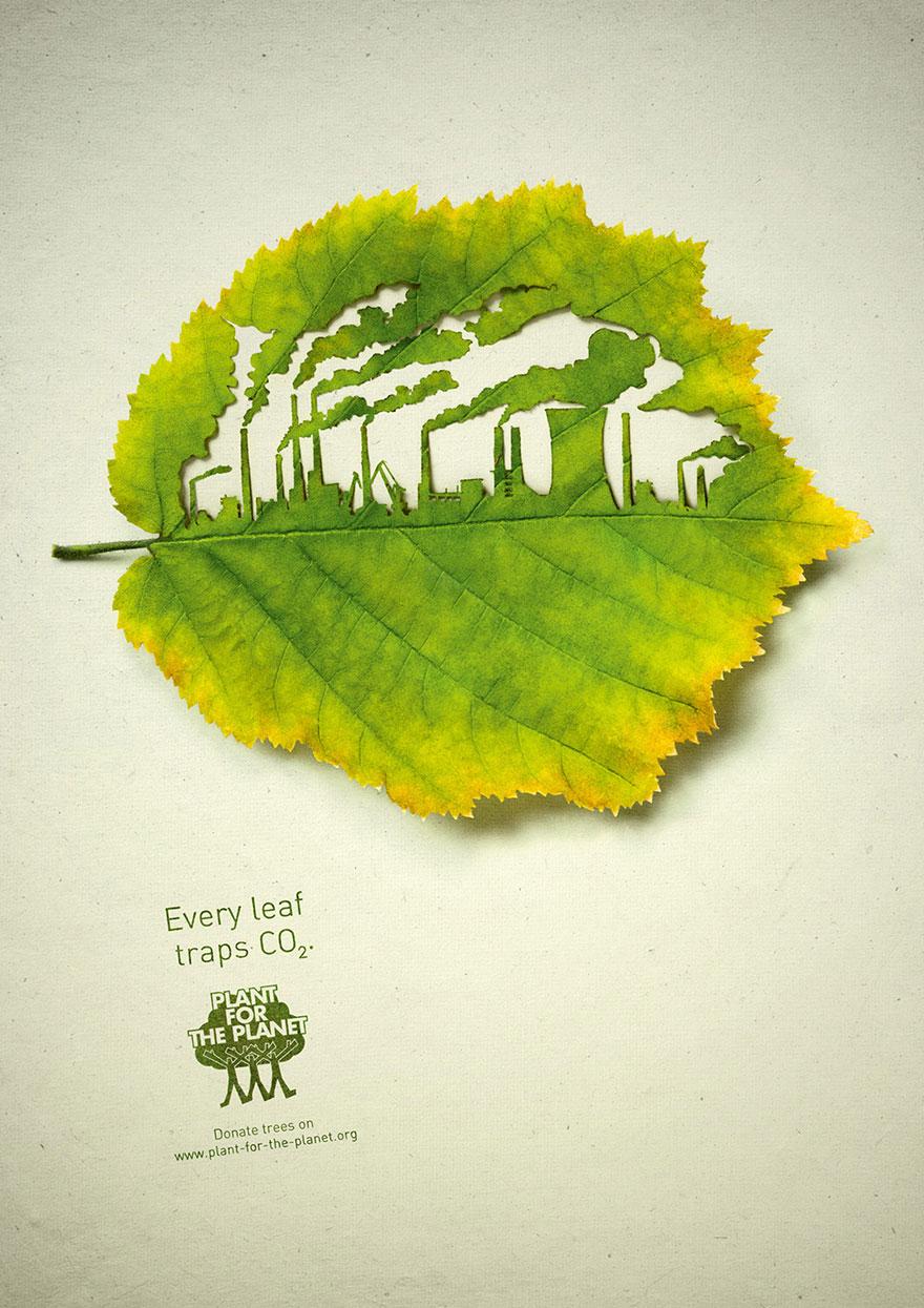 سیاره برگ CO2 کاشتن بکاریم