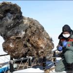 ماموت منجمد 40000 هزاره کشف شد