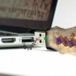 هارد دیسک DNA با اطلاعات یک میلیون ساله!